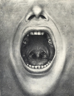 Mouth of Insanity